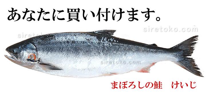 Keiji7203
